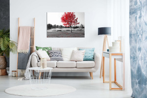 Large Tree Red Leaves Black White Park Bench Nature Canvas