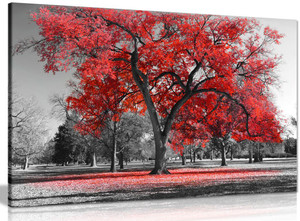 Large Tree Red Leaves Black White Nature Canvas