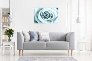 Duck Egg Blue Rose Canvas