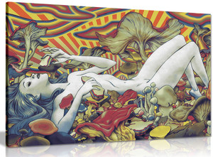 Psychedelic Trippy Art Girl Mushrooms Canvas