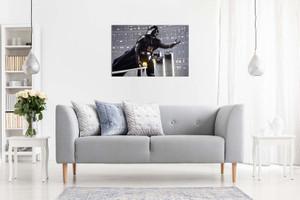 Star Wars Darth Vader Bridge Canvas