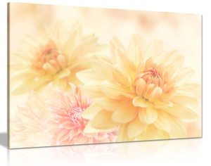 Cream Yellow Pink Flowers Off White Canvas