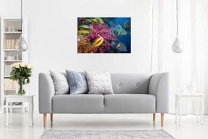 Tropical Fish & Coral Canvas
