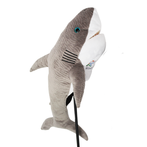 SHARK GREY
