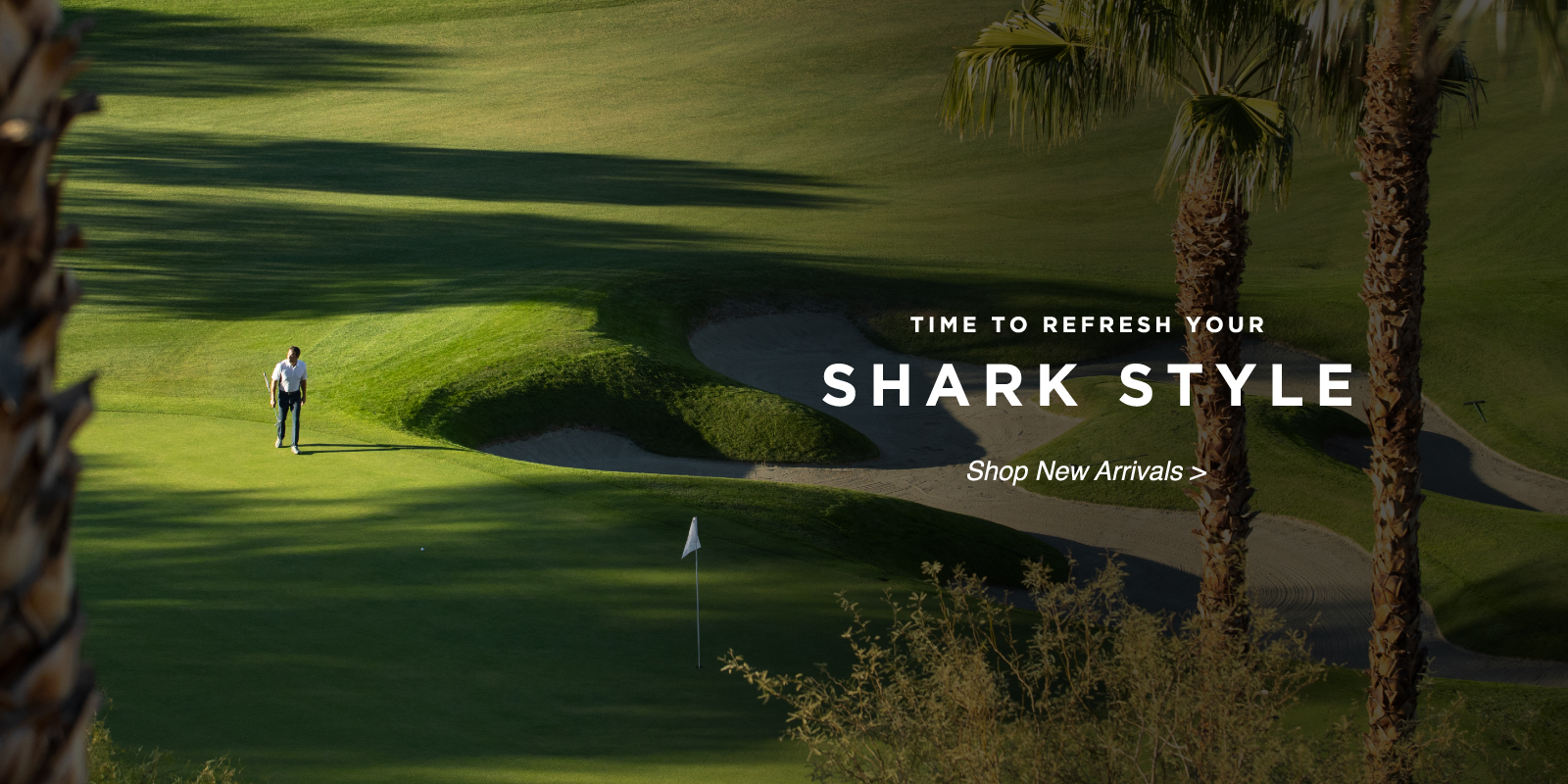 Time to refresh your shark style show new arrivals