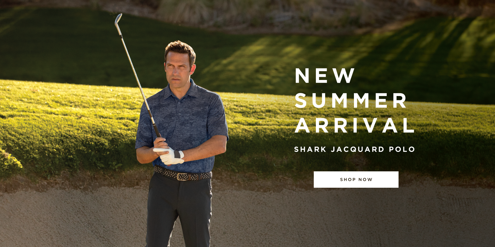 New Summer Arrival Shark Jacquard Polo Shop Now