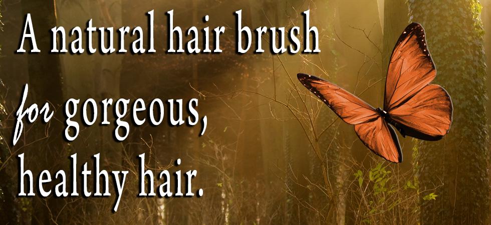 brush-banner.jpg