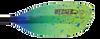 Werner Shuna Hooked Lime Drift