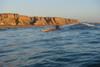 AirFusion Evo Surfing
