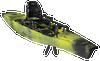 Pro Angler 14' 360 - 2020