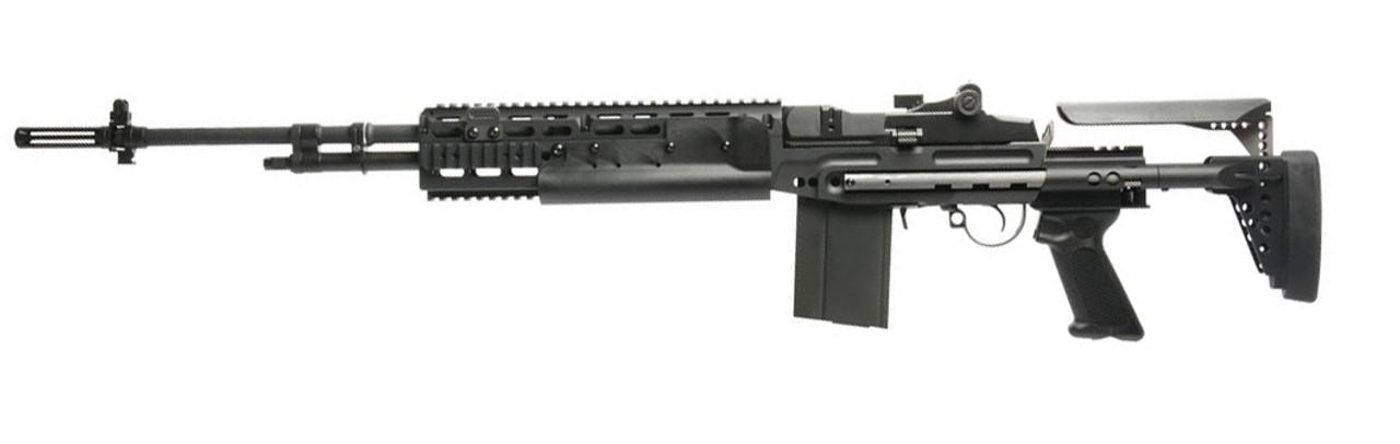 M14 AEGs