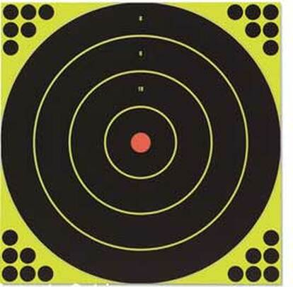 Birchwood Casey Shoot-N-C Bullseye Targets, 12, 5 Targets 120 Pasters