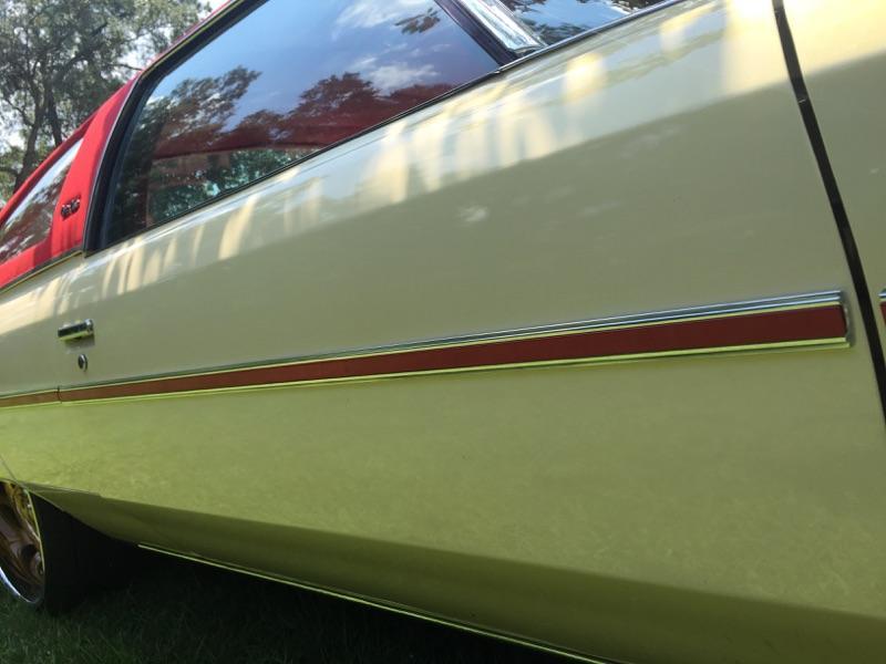 1975 1976 Caprice Side Trim 12 Piece Set