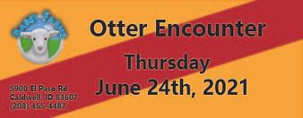 Otter Encounter 6/24/2021