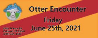 Otter Encounter 6/25/2021