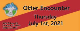 Otter Encounter 7/1/2021