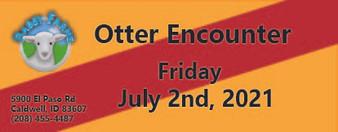 Otter Encounter 7/2/2021