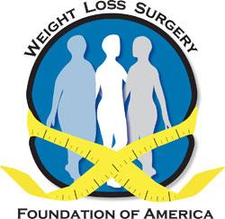 wlsfa-logo-small.jpg