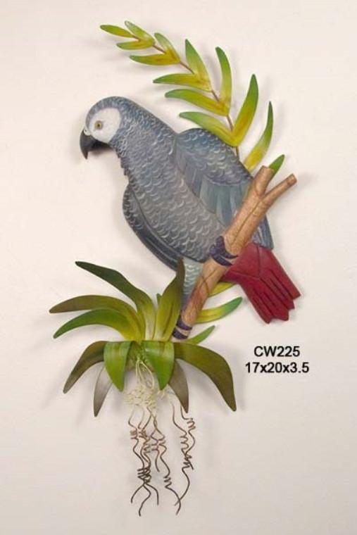 African Gray Parrot Wall Art