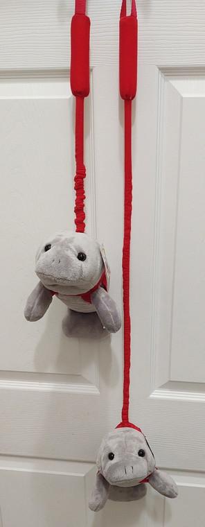 Manatee on a leash