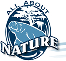All About Nature /Manatee Gift Store/Land & Sea Decor
