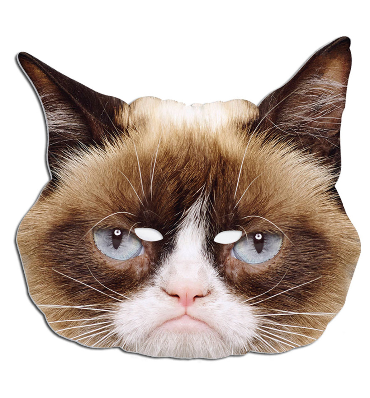 Grumpy Cat Single Card Party Face Mask. In Stock Now with Free UK ... 05bbd8e0a391