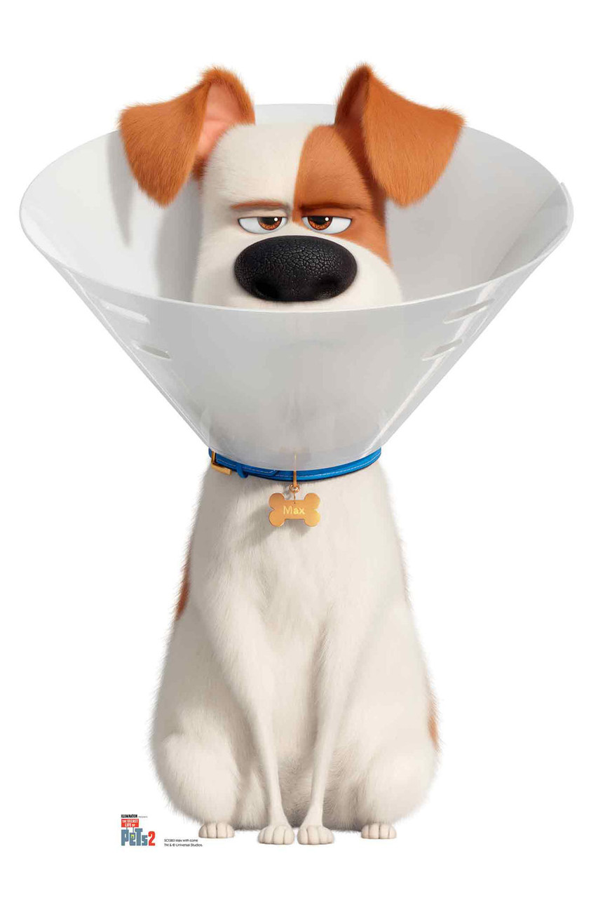Max Wearing Cone Collar The Secret Life Of Pets 2 Cardboard Cutout Standup