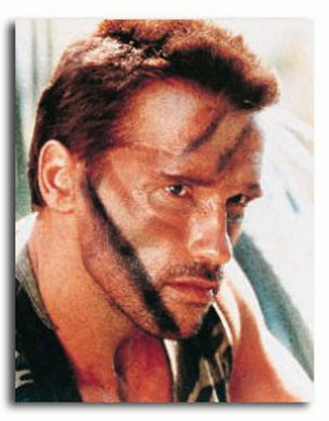 (SS294073) Arnold Schwarzenegger  Predator Movie Photo