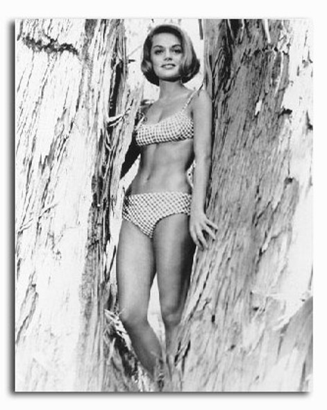 (SS2213757) Dyan Cannon Music Photo