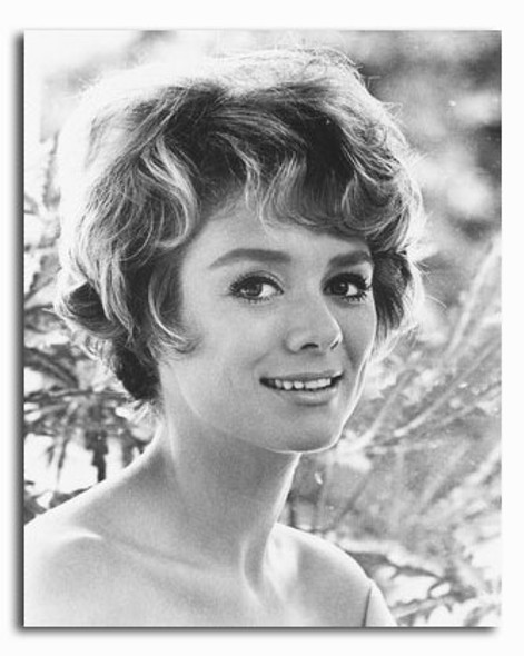 (SS2229162) Inger Stevens Movie Photo