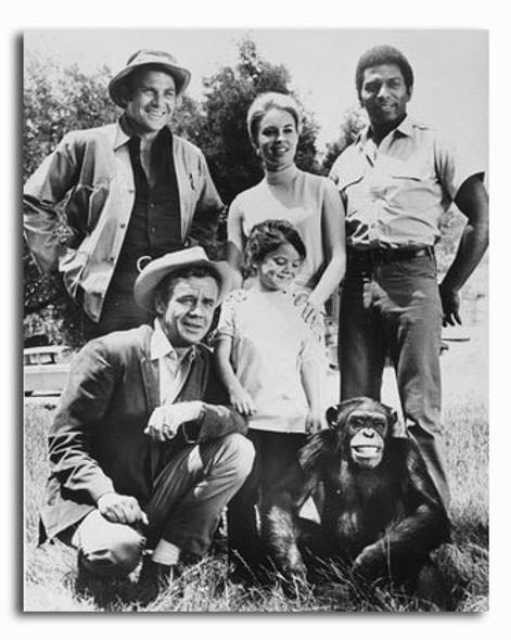 (SS2239900) Cast   Daktari Television Photo