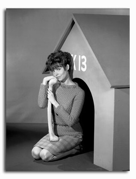 (SS2265081) Barbara Feldon  Get Smart Movie Photo