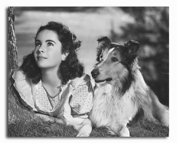 (SS2277730) Elizabeth Taylor Movie Photo