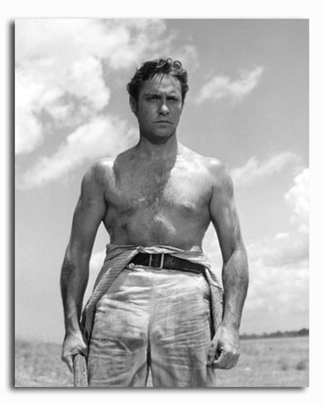 (SS2277769) Richard Todd Movie Photo
