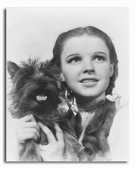 (SS2295904) Judy Garland  The Wizard of Oz Movie Photo