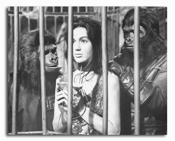 (SS2310607) Linda Harrison  Planet of the Apes Television Photo