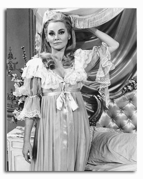(SS2325843) Diane Cilento Movie Photo