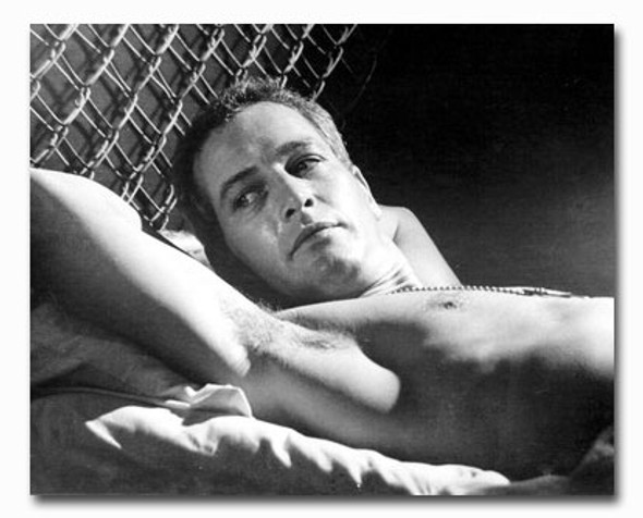 (SS2329548) Paul Newman Movie Photo