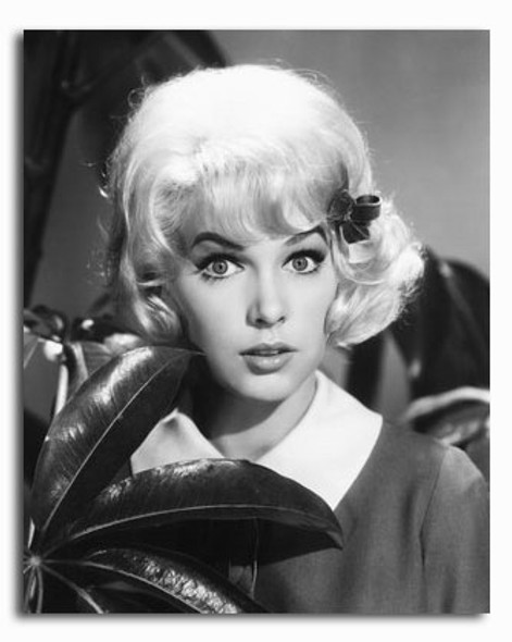 (SS2339298) Stella Stevens Movie Photo