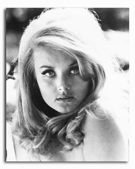 (SS2423785) Barbara Bouchet Movie Photo