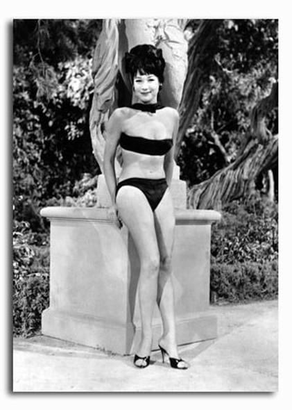 (SS2426593) Shirley MacLaine Movie Photo