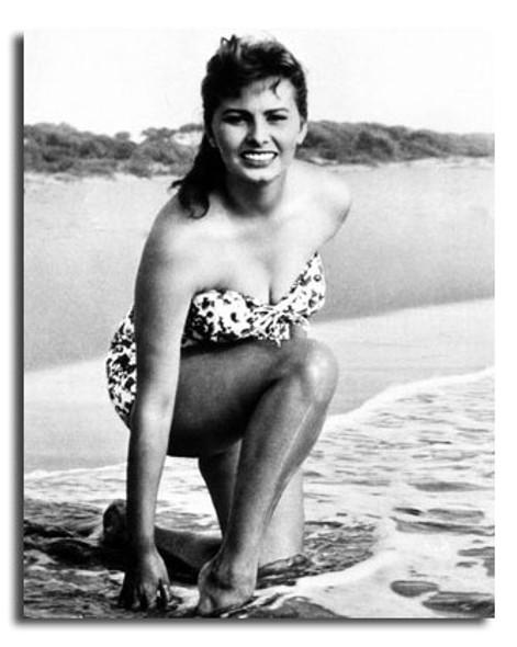 (SS2447731) Sophia Loren Movie Photo