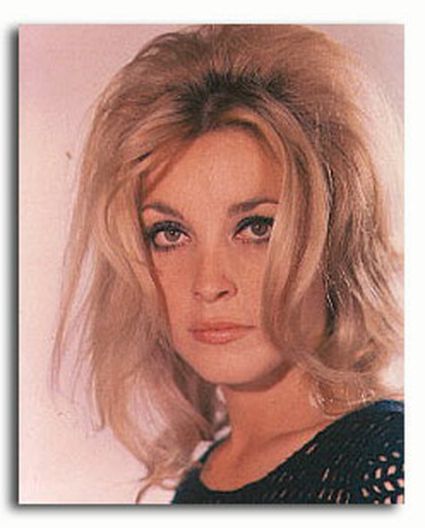 (SS2840253) Sharon Tate Movie Photo