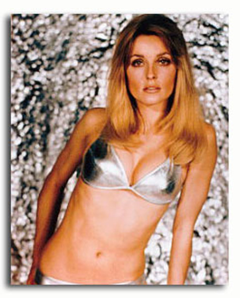 (SS2919774) Sharon Tate Movie Photo