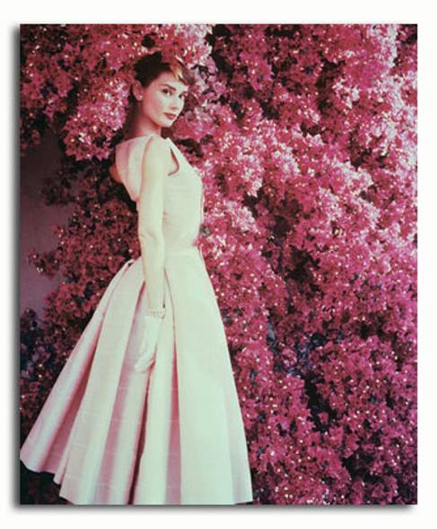 (SS3049878) Audrey Hepburn Movie Photo