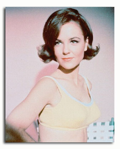 (SS3066661) Shelley Fabares Movie Photo