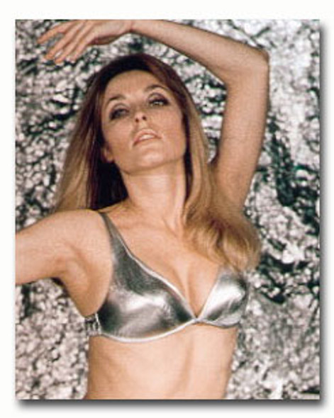 (SS3101397) Sharon Tate Movie Photo