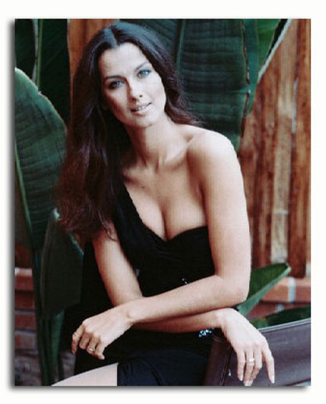 (SS3158662) Veronica Hamel Movie Photo