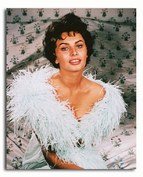 (SS3164317) Sophia Loren Movie Photo