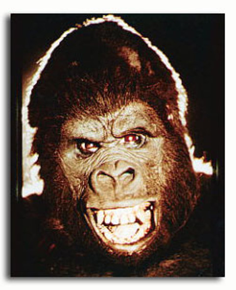 (SS3183544)  King Kong Movie Photo